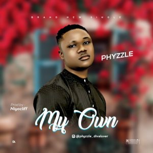 Phyzzle – My Own